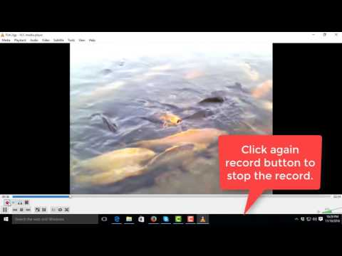 How to Cut Video Using VLC Media Player