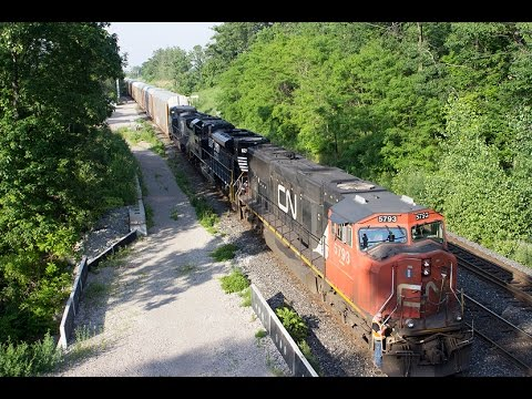 RARE! CN 399 with Norfolk Southern and IC Blue Devil Units