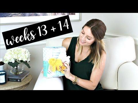 Twin Pregnancy Vlog Weeks 13 + 14: Symptoms, Ultrasound, Vitamins | Kendra Atkins