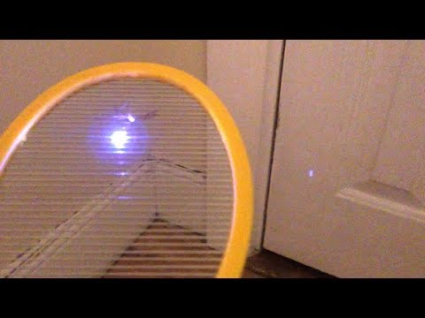 NEW! - Best Electric Fly Swatter: Executioner vs. Zap-It! vs. Elucto - Bug Zapper Review