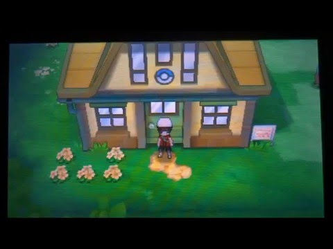 Pokemon Omega Ruby and Alpha Sapphire (ORAS) - Getting the SHINY CHARM