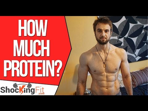 How Much Protein Do You Really Need? (Quick Guide)