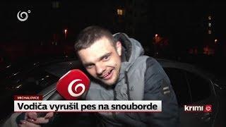 Vodiča vyrušil pes na snouborde (NOVINY TV JOJ)