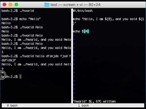 Introduction to Bash Shell Scripting - Conditionals, Loops, Arguments & More!