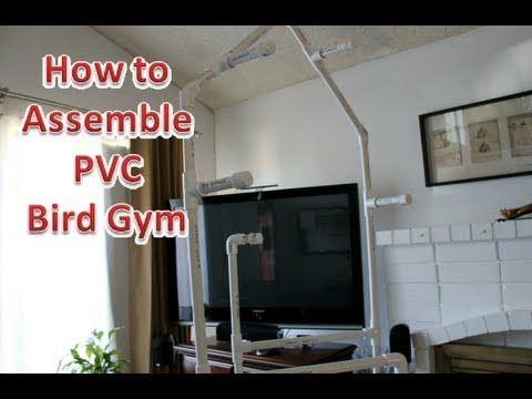 How to Assemble PVC Bird Play Gym (Supplement)