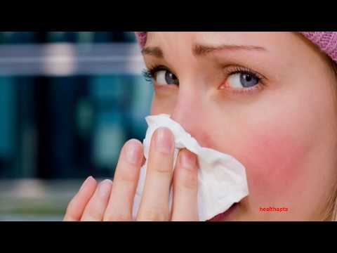 HOW TO PREVENT AND TREAT MOLD ALLERGIES