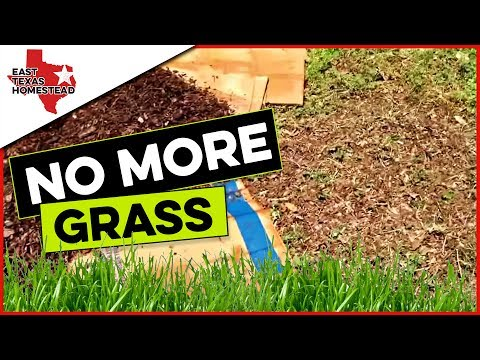 How To Kill Grass In Flower Bed Naturally