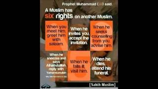 habeeb abdullah alhamed