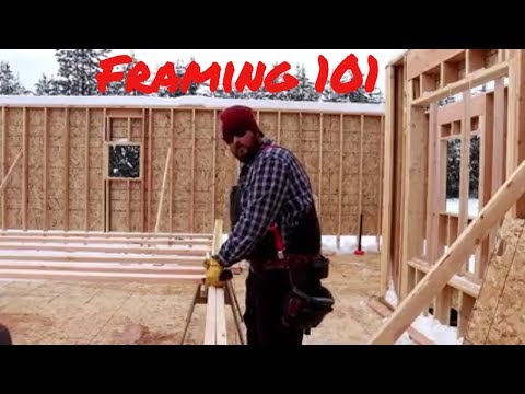 Want to Build Your Own Home, You Can Do It!  🛠️😎