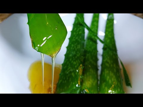 Eat Aloe Vera and Honey on empty stomach 2 weeks this will happen to your body!