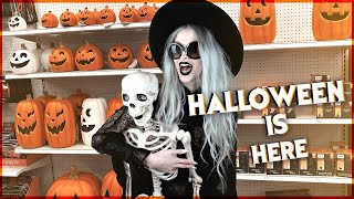 Download Halloween Decor Hunting!!! Target, Ross, Dollar Tree, Pier1 and more... Video