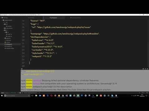 Webpack Tutorial for Beginners #5 - CSS Loaders