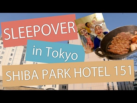 Sleepover in Tokyo (1): Shiba Park Hotel 151
