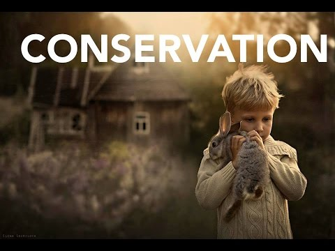 Race Conservation