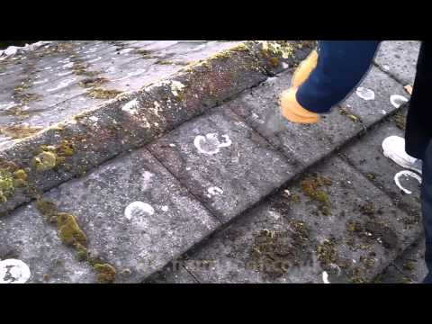 How to clean Moss from roof Tiles   Cleaning moss from leaking roof