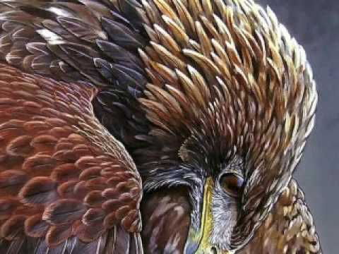 My Within/Power Animal - The Golden eagle