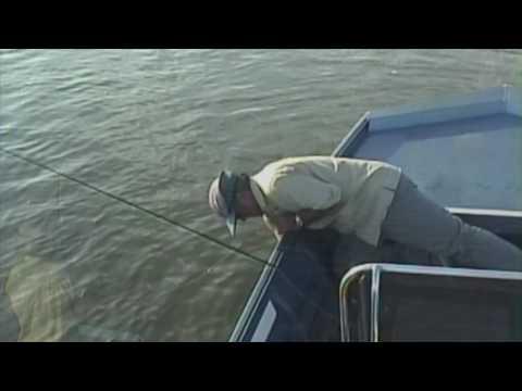 Fly Fishing Redfish on the Lower Laguna Madre, Arroyo City, Texas