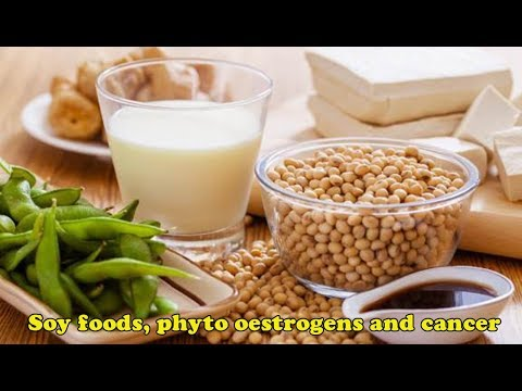 Soy foods, phyto - oestrogens and cancer