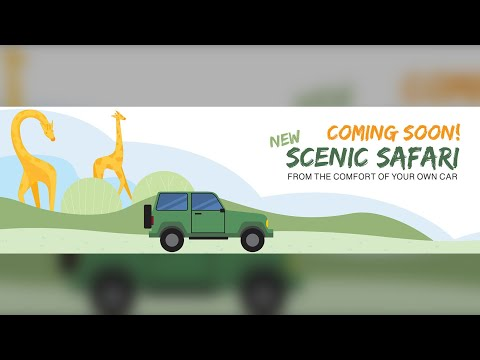 Toronto Zoo developing drive-thru experience