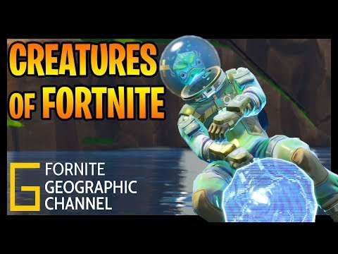 Fortnite Geographic | The different creatures of Fortnite | Replay mode cinematic