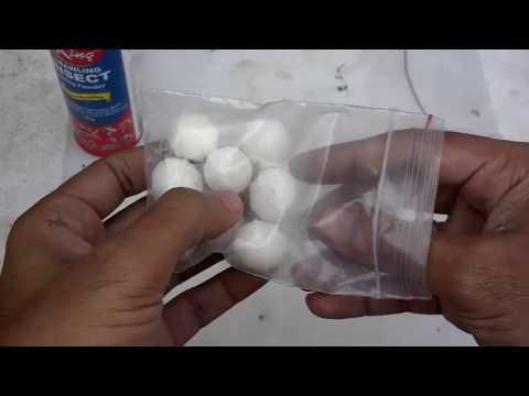Homemade Pesticide Spray | Homemade Bug Killer For Birds+Plants (Urdu/Hindi)