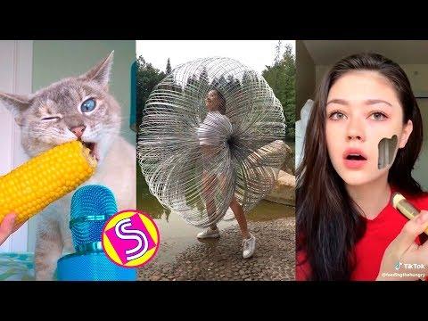Xxx Mp4 Best Funny TikTok Videos Compilation Comedy Amp Satisfying TikTok 2019 3gp Sex