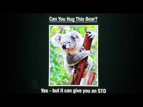 Dont catch std's from a bear