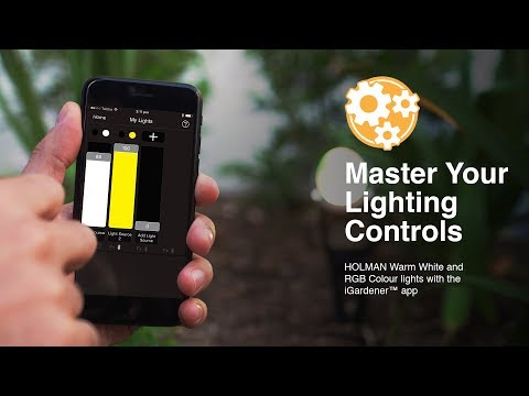 Master Your Lighting Controls