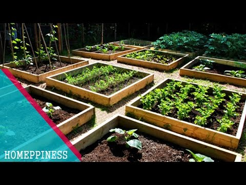 HAVE YOU LOOK THIS? 20+ Cheap Vegetable Garden Ideas that Will Save Your Money