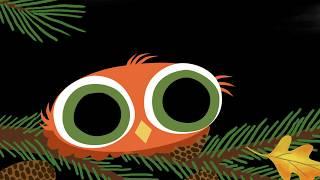 Book Trailer: Little Owl's Snow by DIVYA SRINIVASAN