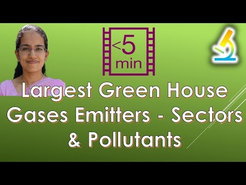 Largest Green House Gases Emitters - Sectors & Pollutants