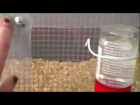 How to make a hamster bin cage and where to get the parts in the UK