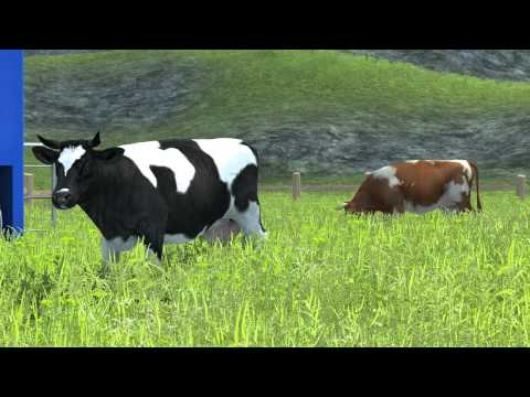 Farming Simulator 2013 | Animals