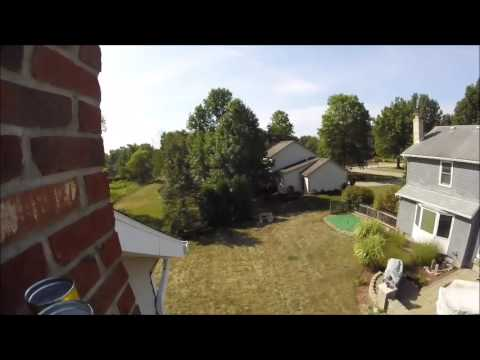 Bat Removal | Common Chimney Entry