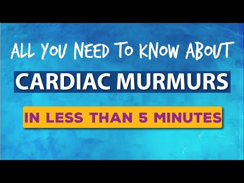 Heart Murmurs | In Less than 5 minutes - All You Need To Know