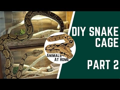DIY Snake Cage: Part 2