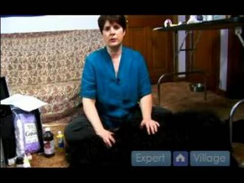 Dog First Aid : Treating Diarrhea in Dogs