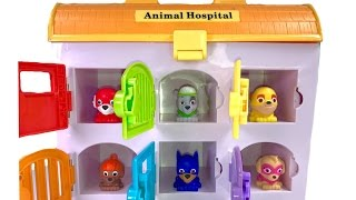 Colors  with Paw Patrol Super Pups Mashems in Animal Hospital