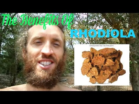 Rhodiola! - Best Herb On The Planet? Incredible Mood Booster, Adaptogen Energizer & Anti-Depressant!