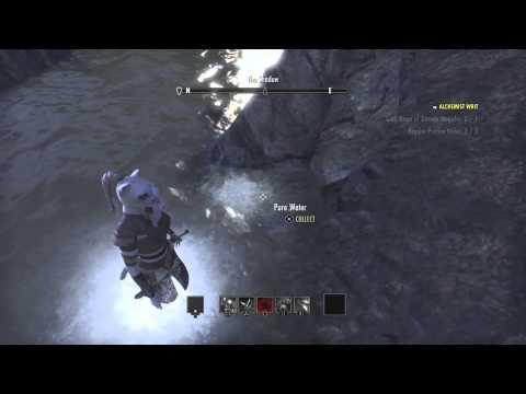 Elder Scrolls Pristine Water location Rivenspire PS4-Guest video from ArtemisRose_Moon