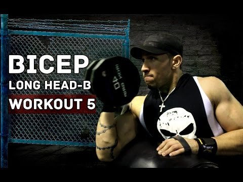 4 WEEK BICEP BUILDING PROGRAM - BICEP LONG HEAD-B #BICEPCHALLENGE