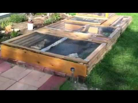 Large Outdoor Turtle & Bearded Dragon Habitat & Setup