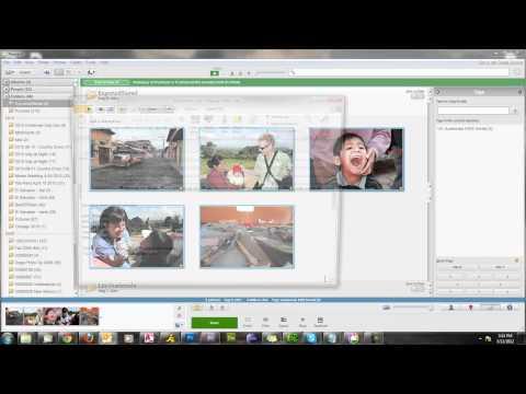 Picasa Part 2: Sharing and Printing Photos