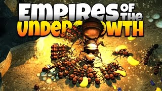 Red Ants Kill Black Ant Queens! - Empires of the Undergrowth Gameplay - Demo Update