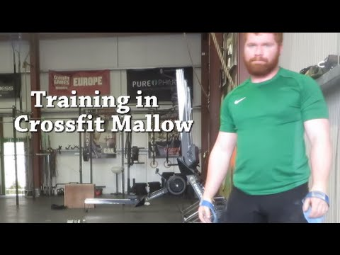Eoin Backsquats 250kg!!! - Training in Crossfit Mallow