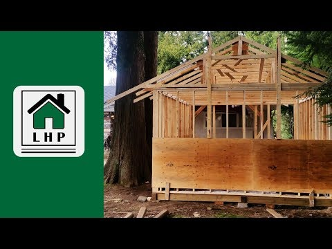 Shed Walls and Trusses - Framing Day 2 - LHP