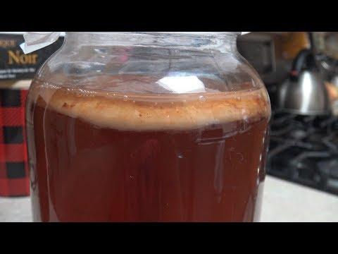 Homemade Kombucha (Make your own SCOBY!)