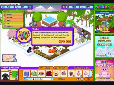 My old, old webkinz account (UPDATED)