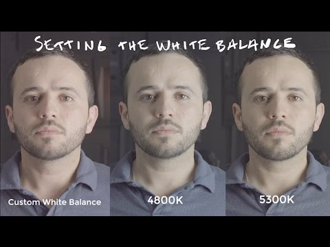 Better Skin Tones by Setting a Custom White Balance