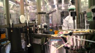 Vaccine production process at BIVI
